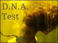 D.N.A. Test