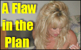 Flaw in the Plan