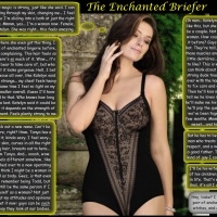 The Enchanted Briefer