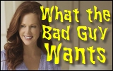 what the bad guy wants